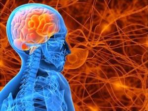 Epilepsia e envelhecimento: novas descobertas