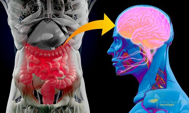 Mais evidências de que Parkinson pode começar no intestino
