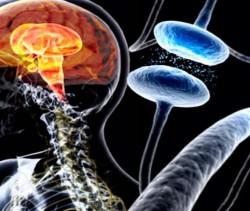 Risco de Demência na Doença de Parkinson