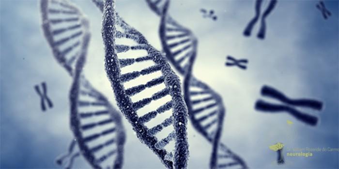 Fatores de Risco Genéticos para o AVC