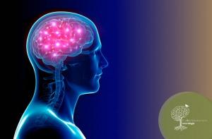 Cirurgia para Doença de Parkinson – Estimulação Cerebral Profunda