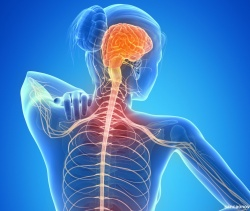 O que é Esclerose e Quais Seus Tipos?