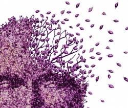Os Sintomas e Tipos de Demência