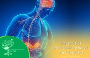 Influência da Microbiota Intestinal na Enxaqueca