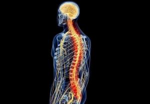 Eletrodo Medular – Cirurgia Para Dor Neuropática