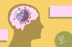 Como Reduzir o Impacto da Pandemia na Memória